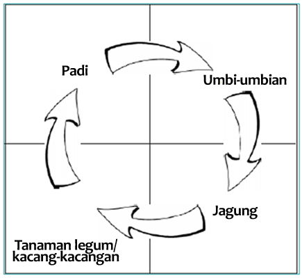 Ketegangan Dan karakteristik pupuk Hijau